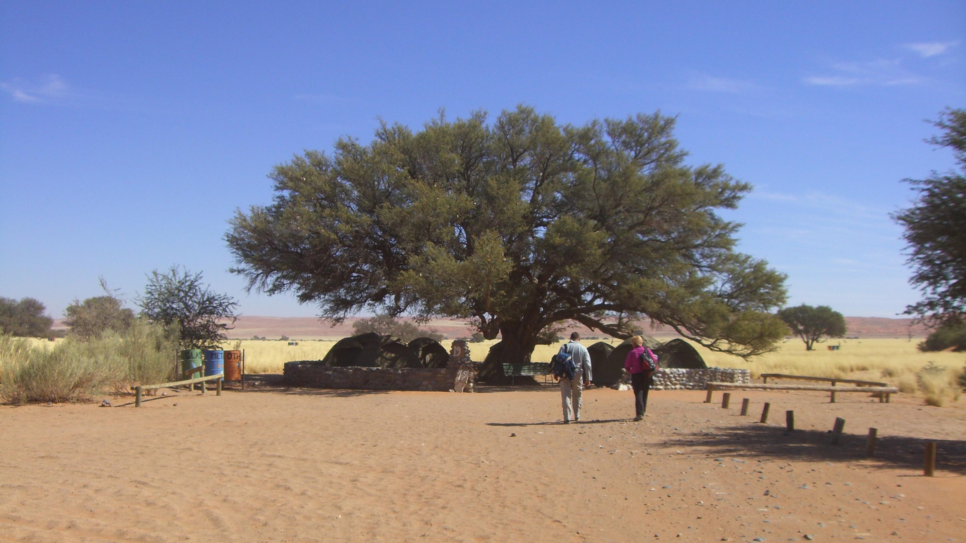Namibia & Botswana - 00067