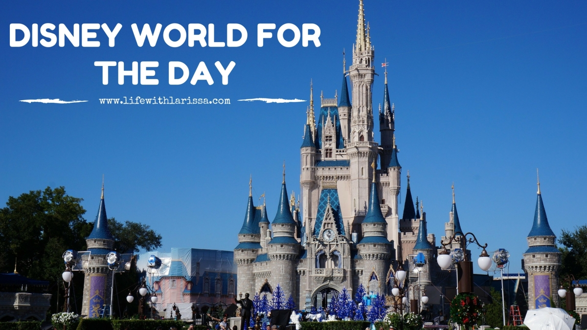 Disney World for the Day